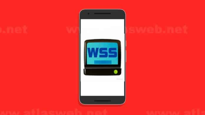 World Sports Stream